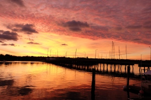 Sunset at Newport, Linguamatics Text Mining Summit 2014